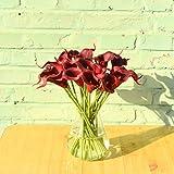 Mandy's 20pcs Dark Red Artificial Calla Lily