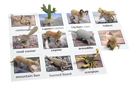 Prairie Animals - Montessori Desert Animal Match Cards and Figurines. Nomenclature Science Work