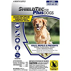 ShieldTec (4-dose) (X-LARGE DOG 66+ lbs)