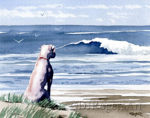 White Boxer At the Beach Art Print by Watercolor Artist DJ ()