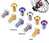 M5x10mm Disk Brake Rotor Bolts T25 Torx Titanium Bicycle Parts Titanium Mountain Bike Ultralight Brake Rotor Screw 12 pcs/bag (Rainbow)
