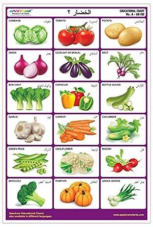 Amazon Com Spectrum Arabic Language Vegetables 2