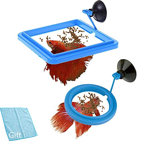 FLOURITHING 2 Pcs-Set Aquarium Fish Tank Ring Floating Station Food Tary Square with Suction Cup -Suitable for Flakes & Other Floating Fish Foods- Reward Superfine Fiber Towels - Fish Square