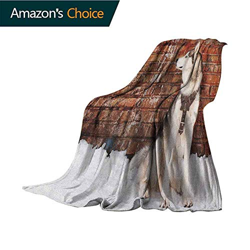 Alaskan Malamute Weighted Blanket for Kids,Domestic Pet Grungy Brick Wall and Snow Pedigree Animal Friend Flannel Blankets Super Soft Warm Thick Blanket for Home,35