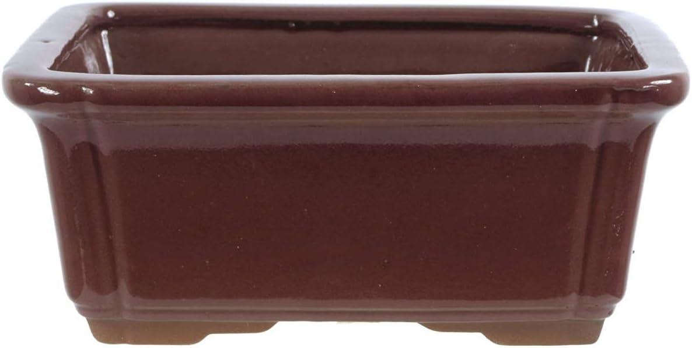 Bonsai - Maceta rectangular de rubí (21 x 16, 5 x 9 cm): Amazon.es ...