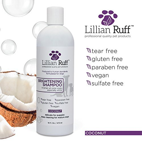 Dog-Shampoo-Conditioner-Set-by-Lillian-Ruff-Coconut-Brightening-Shampoo-Soothing-Lavender-Coconut-Oatmeal-Conditioner-Tear-Free-with-Aloe-for-Normal-Dry-Sensitive-Skin-16-oz
