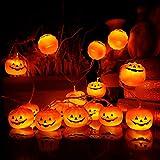 KAILEDI. Halloween String Lights, LED Pumpkin Lights, Holiday Lights for Outdoor Decor,2 Modes Steady/Flickering Lights(20 One Pumpkin Lights, 9.8 feet) (Orange)