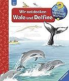 Wir entdecken Wale und Delfine (Wieso? Weshalb? Warum?, Band 41)