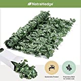 NatraHedge Artificial Ivy Leaf Roll 94″ x 39″ Review
