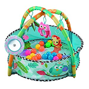 2 in 1 Baby Playmat Early Education Activity Gym Kids Ball Pit Pool Indoor and Outdoor Play Mat & Ball Pit with Tummy…