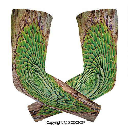 (Comfort and Durable Lightweight Arm Guard Sleeve National Flower of Lesotho South of Africa Aloe Polyphylla Spinning Spiral Aloe Vera Breathable, Flexible Sleeves Protection)