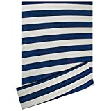 DII Contemporary Indoor/Outdoor Lightweight Reversible Fade Resistant Area Rug, Great Patio, Deck, Backyard, Picnic, Beach, Camping, BBQ, 4 x 6', Navy/White 3.5'' Stripe