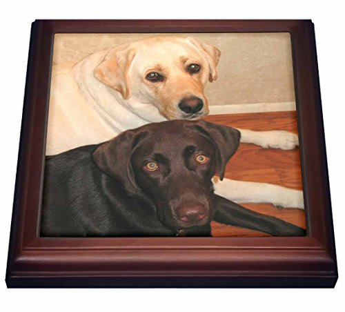 (3dRose trv_3323_1 Labrador Retriever Trivet with Ceramic Tile, 8 by 8