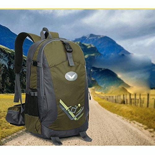 Las nuevas alas al aire libre profesional bolsa de viaje mochila al aire libre del alpinismo del hombro bolsa de viaje bolsa de montar a caballo verde del ejército