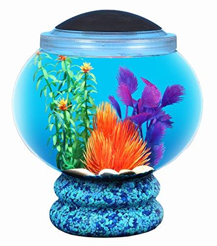 fish tank pedestal - 2