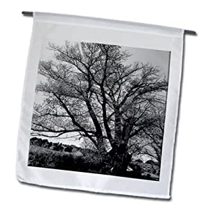 Jos Fauxtographee Realistic - A Big Tree in Black and White on The Side of a Dirt Road in Enterprise, Utah - 12 x 18 inch Garden Flag (fl_52553_1)
