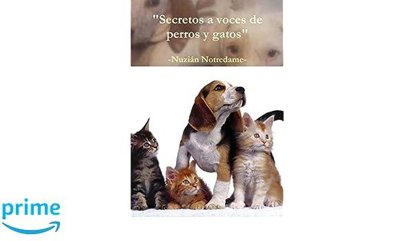 Secretos a voces de perros y gatos (Spanish Edition): Nuzián Notredame: 9781326877293: Amazon.com: Books