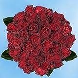 GlobalRose 100 Fresh Cut Dark Red Roses - Long Stem Roses - Fresh Flowers For Birthdays, Weddings or Anniversary.