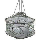 Best Crab Traps - YONGZHI Crab Trap,Minnow Traps,Shrimp Trap,Fishing Bait Traps,Crayfish Trap,Portable Review