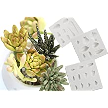 (3 in set)DIY 3D Succulent Flower plants GumPaste Mold Silicone Fondant Mold for Cup Cake Decoration Chocolate Mold cooking Sugar Bow Craft Molds