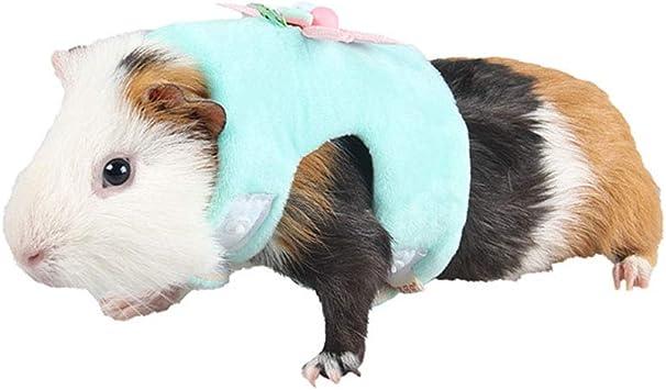 OMEM - Arnés de Animales pequeños con Correa para Caminar al Aire ...