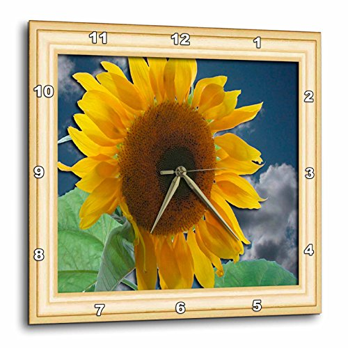 3dRose dpp_12320_3 Framed Giant Sunflower Wall Clock, 15 by 15
