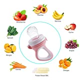 PChero Baby Fresh Food Feeder Fruit Pacifier