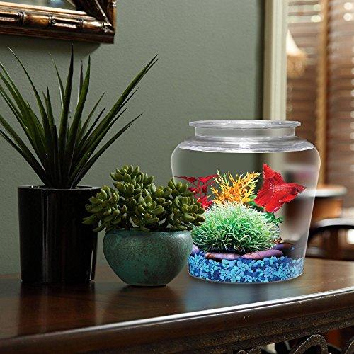 KollerCraft-1-Gallon-Vase-Shaped-Fish-Bowl