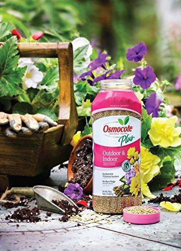 how to use osmocote fertilizer