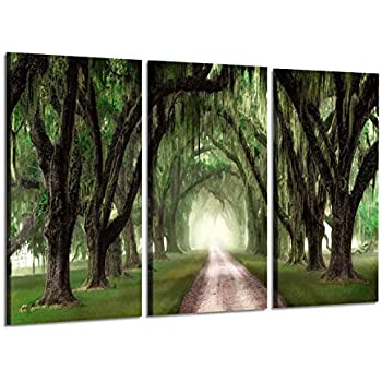 Forest Canvas Paintings Wall Art: Oak Tree Landscape Picture Artwork Print on Wrapped Canvas for Office (34'' x 20'' x 3 Panels)