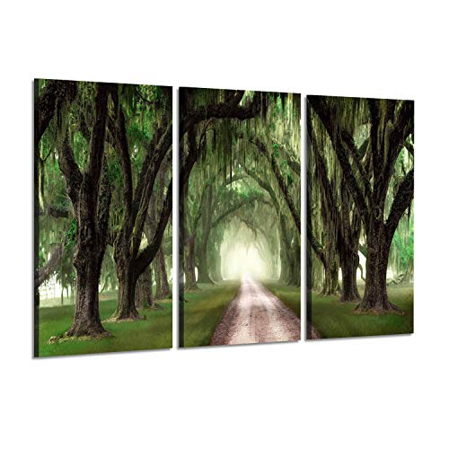 - Nature Pictures Landscape Artworks: Country Road Below Evergreen Arched Trees, 3 Piece Wall Art on Wrapped Canvas Set for Art Decortation