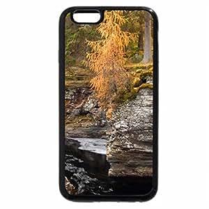 iPhone 6S / iPhone 6 Case (Black) river gorge