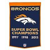 NFL Denver Broncos Dynasty Banner