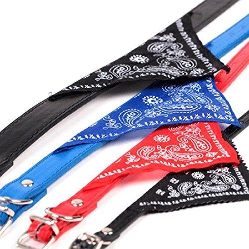 red bandana dog harness - 2