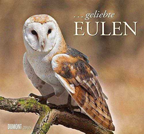 . geliebte Eulen Kalender 2015
