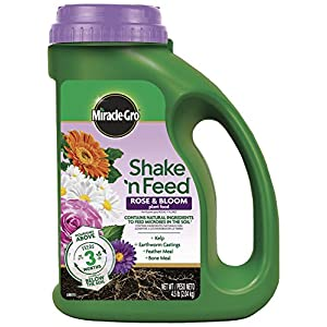 Miracle-GRO Shake 'N Feed All Purpose Continuous Release Plant Food 1