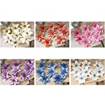 TOYANDONA-24pcs-Glitter-Christmas-Flower-Poinsettias-Christmas-Tree-Decorations-Ornaments-Christmas-DIY-Crafts-Pink