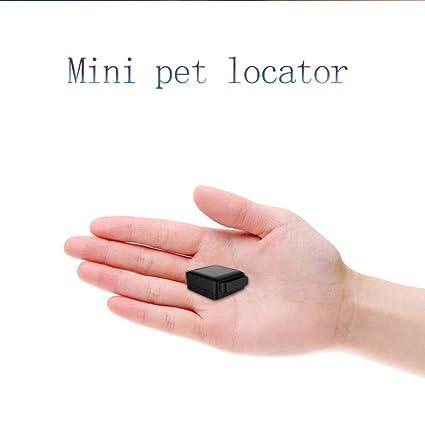 ZDY Mini Localizador GPS para Perros Y Gatos, Localizador Anti-Perdida Anti-Robo