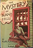 img - for The Mystery of Burnt Hill book / textbook / text book