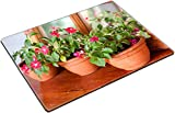 MSD Place Mat Non-Slip Natural Rubber Desk Pads design 21856885 Colorful impatiens plants in terracotta pots on wooden table and backed by mirror