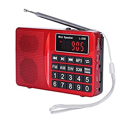 LCJ Portable FM AM SW Multiband Channels Radio with Micro TF Card and USB Driver MP3 Player, USB Charging Cord, Rechargeable Li-ion Battery Memory&Delete Channels Radio(L-258-Gold) Rechargeable Li-ion Battery Memory&Delete Channels Radio( L-258-Gold