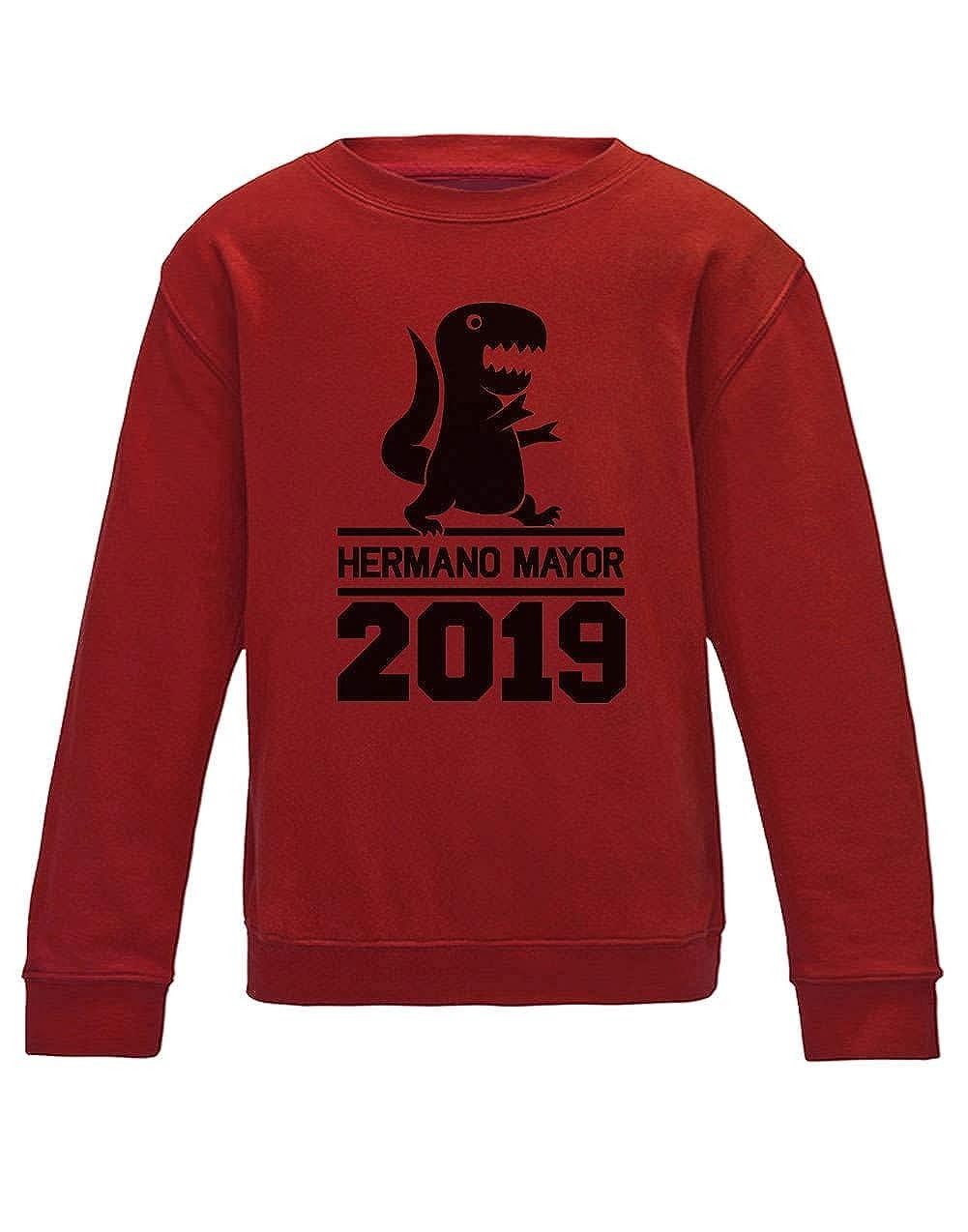 Green Turtle T-Shirts Sudadera para niños - Hermano Mayor Hermanos Mayores: Amazon.es: Ropa y accesorios