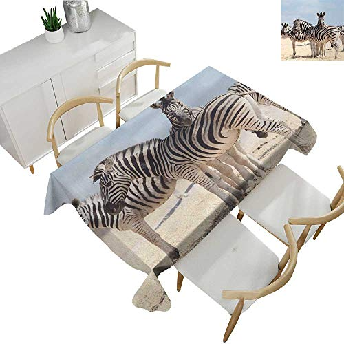 Wildlife,Decor Collection Table Cloths Three Zebras in Namibia National Park Africa Savannah Safari Theme Patterned Tablecloth Light Blue Black Beige 54