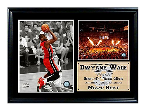 Encore Select 127-10 NBA Miami Heat Framed Dwayne Wade Photo and Dolphin Stadium Print, 12-Inch by 18-Inch