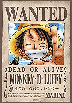 One Piece Wanted Poster Standard