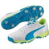 Puma Evospeed 1.4 Spike Cricket Shoes