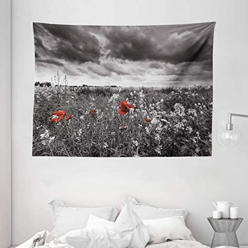 Ambesonne Floral Tapestry, Greyscale Poppy Field in Spring Time Blooming Flowers Grass Open Sky Photo, Wide Wall Hanging for Bedroom Living Room Dorm, 80 X 60 , Dark Green Vermilion