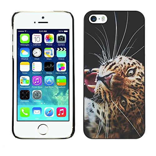 Soft Silicone Rubber Case Hard Cover Protective Accessory Compatible with Apple iPhone? 5 & 5S - puma big cat savannah nature animal africa