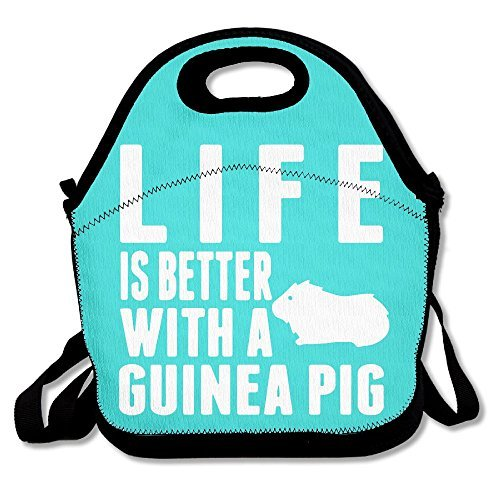 - My Patronus Is Guinea Pig Mint Green Lunch Bags Insulated Travel Picnic Lunch Box Tote Handbag With Shoulder Strap For Women Teens Girls Kids Adults
