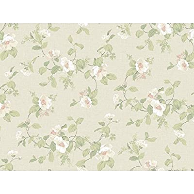 York Wallcoverings PL4670 Hyde Park Southern Belle Floral Wallpaper, Dove Gray/Chalk White/Cream/Soft Coral/Mint Green